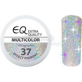 Effect Pigment – HOLOGRAPHIC – 37 MULTICOLOR, 2ml