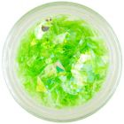 Zöld színű körömdísz – selyempelyhek