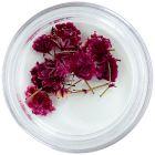 Rózsaszín szárított virágok