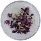 Díszítő szárított virágok – lila