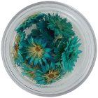Szárított virág – türkiz színű